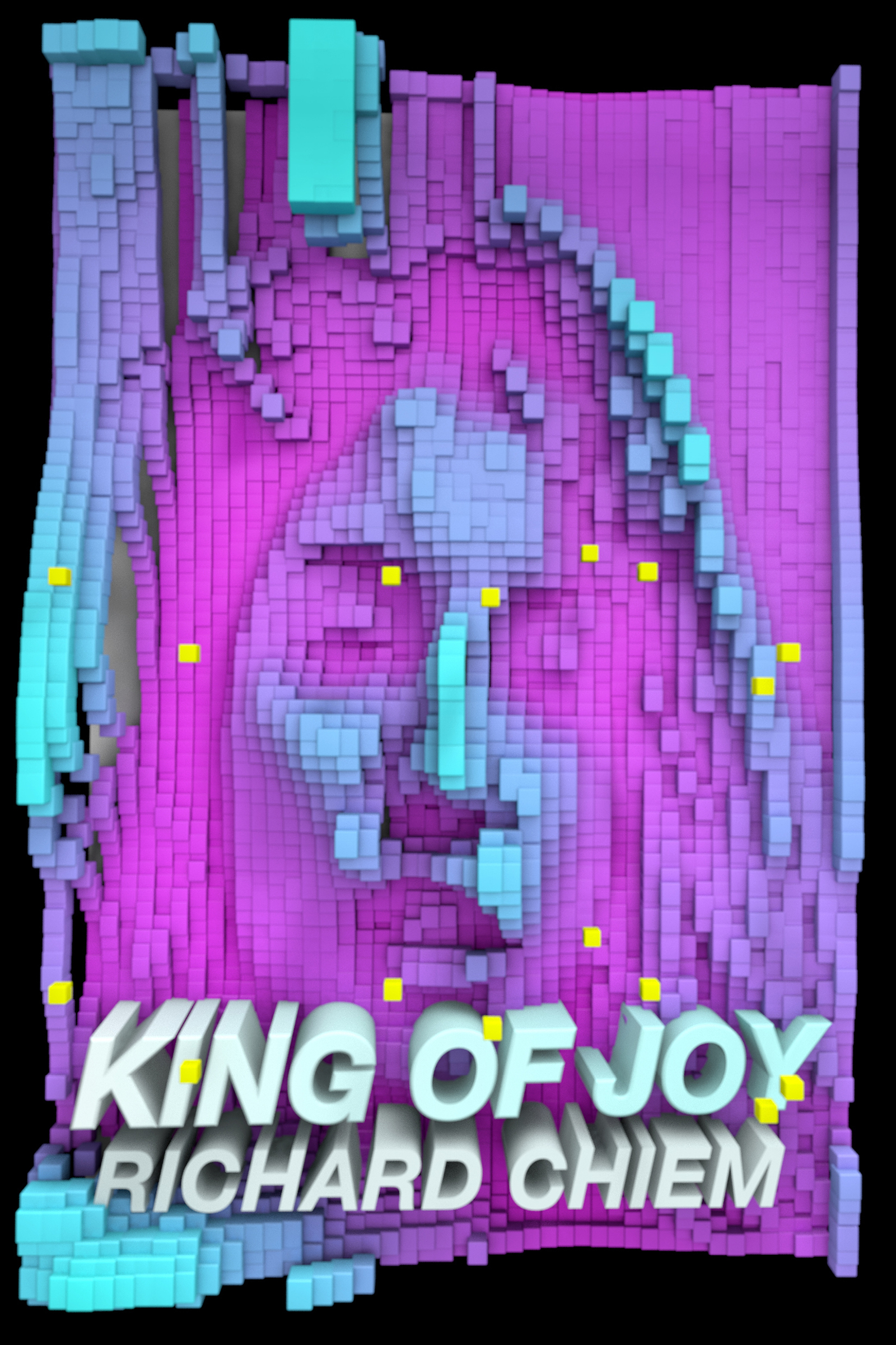 The Seattle Review of Books reviews King of Joy ‹ Soft Skull Press