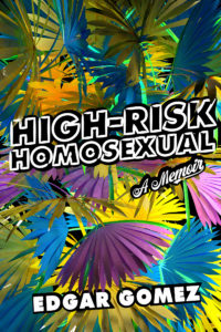 High-Risk Homosexual book cover